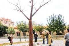 jardin-teatro-pupaclown